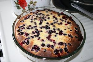 Рецепт пирога со смородиной в духовке